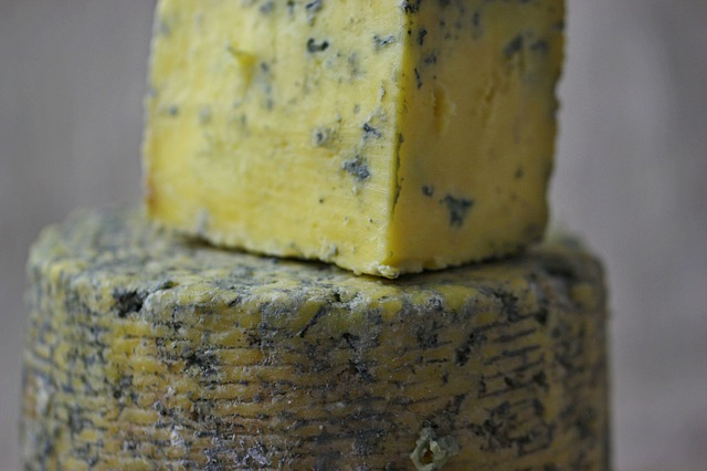 The only moldy thing your landlord will be happy with is cheese.