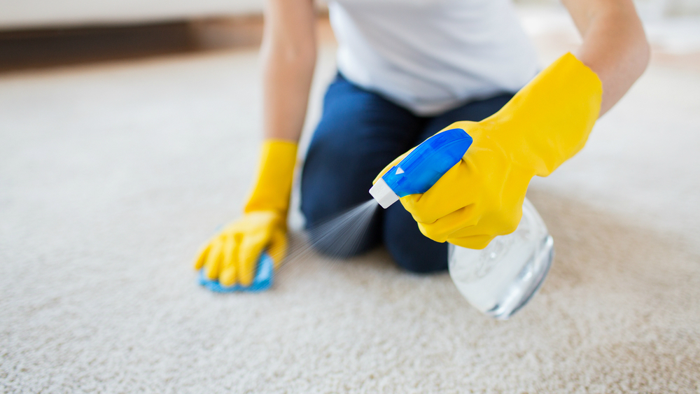 The Cheapest Way to Clean Carpet